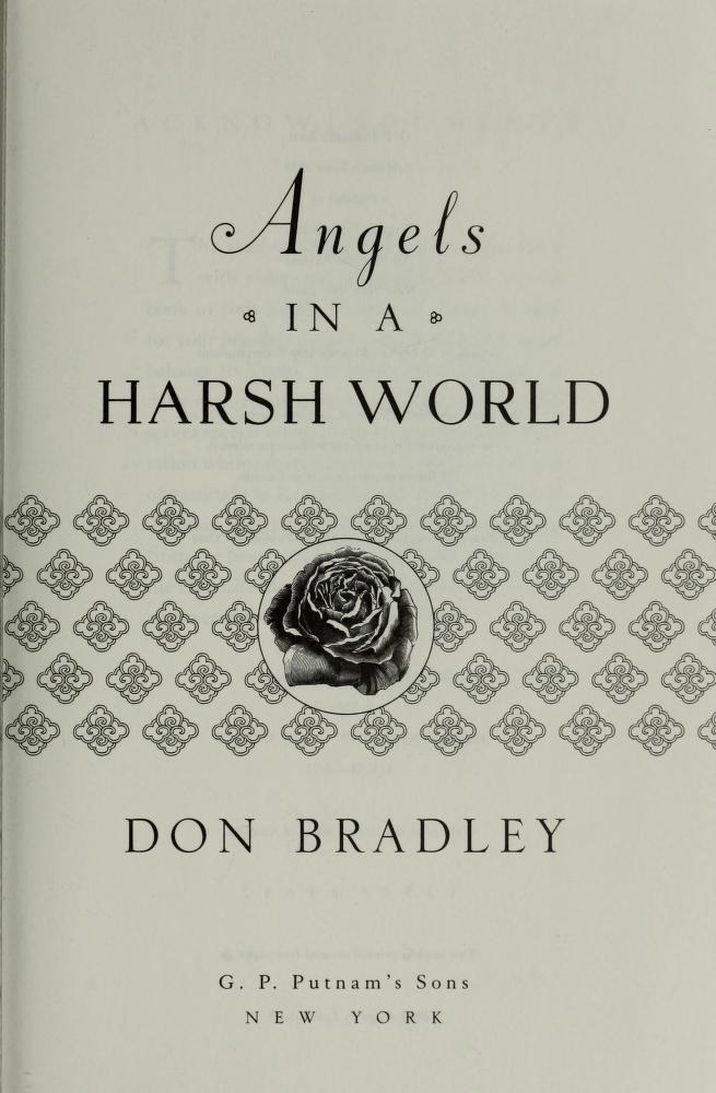 Angels in a harsh world by