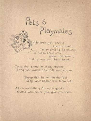 Pets and playmates by